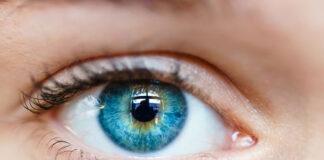 Jak zbudowane jest oko